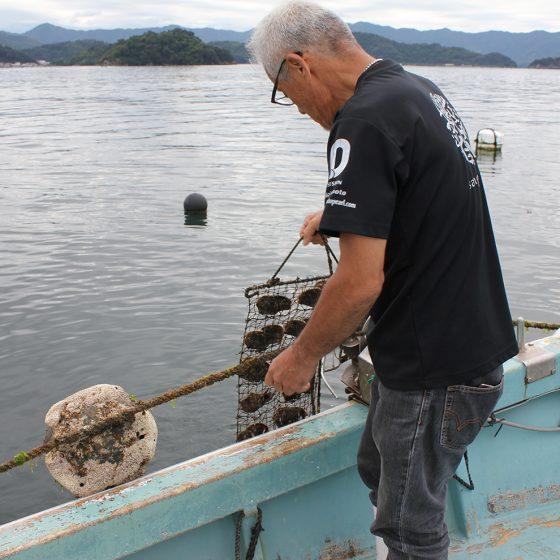 >宇和島の自然豊かな素敵な場所で育まれた真珠たち。